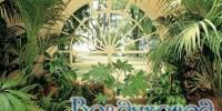 Увлажнитель воздуха для оранжереи, зимнего сада, для грибоводов